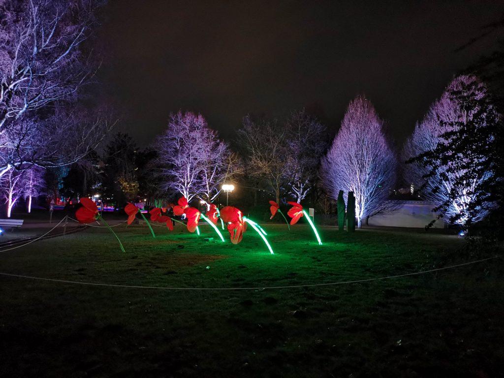 Beleuchteter Park während des Winterleuchten